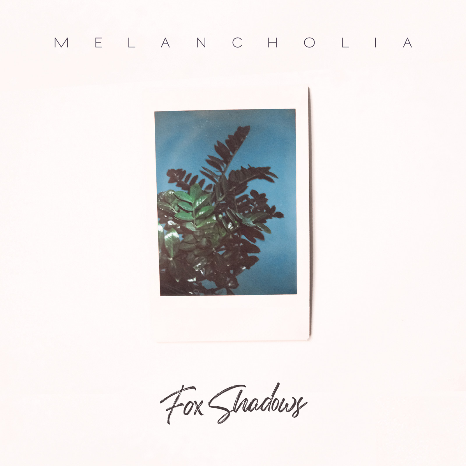Fox Shadows - Melancholia on Vinyl out now!